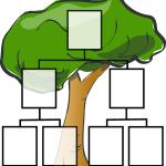 Stammbaum Raida